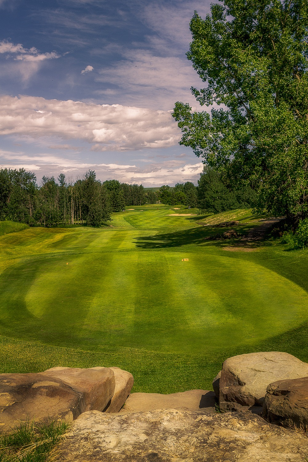 The Golf Course at Cottonwood Golf & Country Club